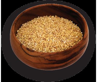 Dehulled Barley